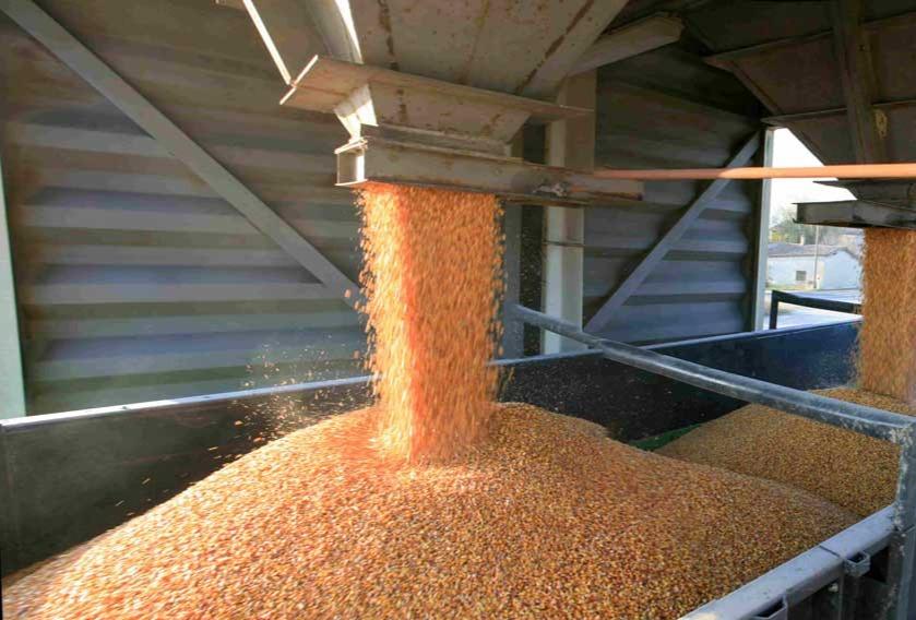 Alternating-Stack-2_Grain-truck-min