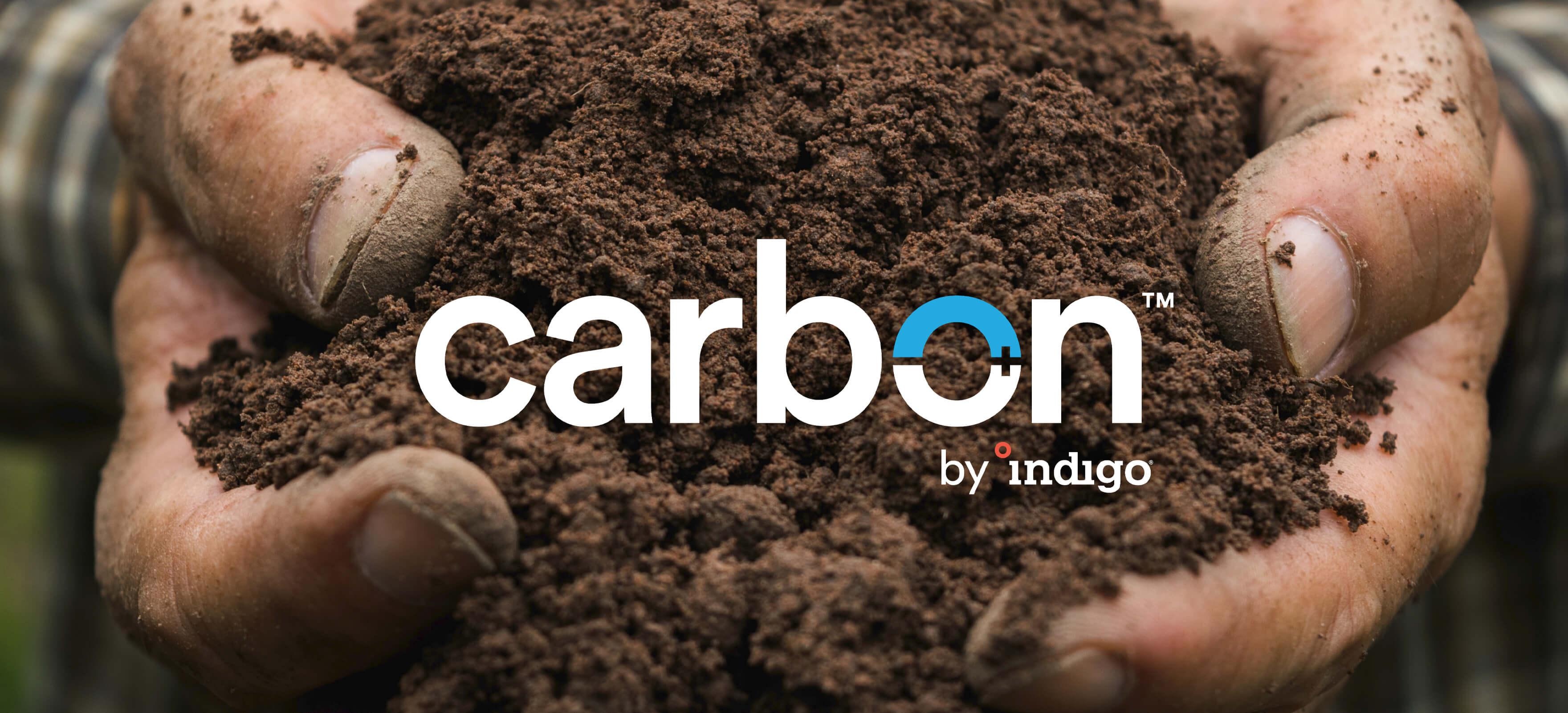 Carbon Hands Soil (1)