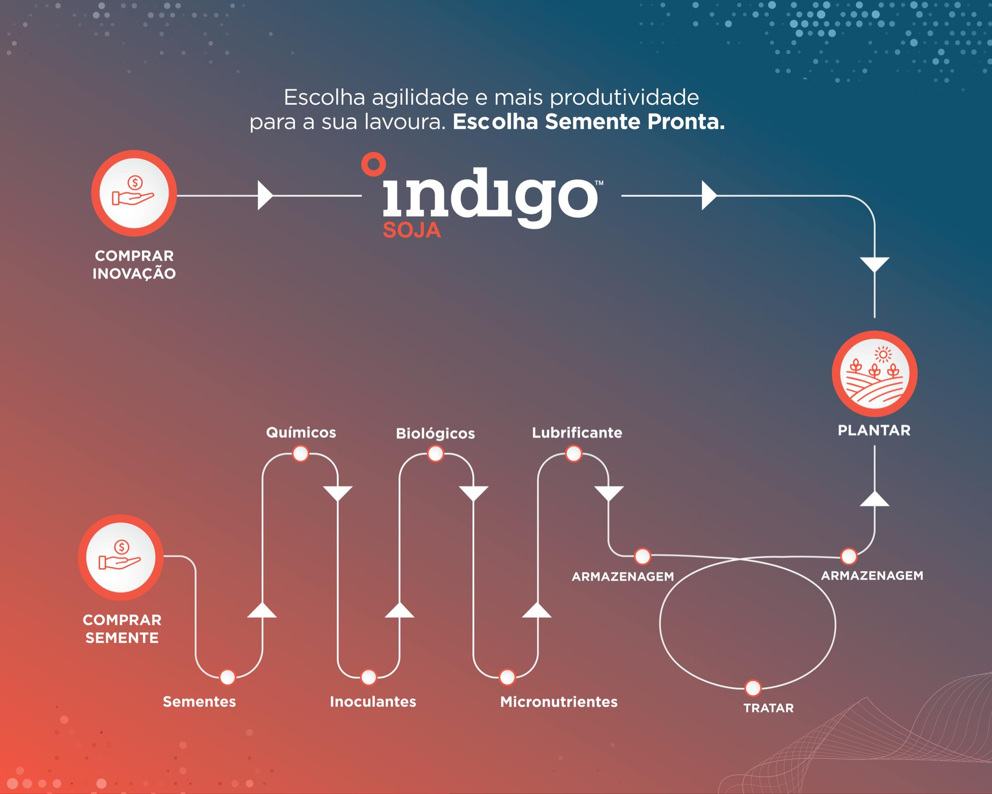Indigo Soja_infographic_small