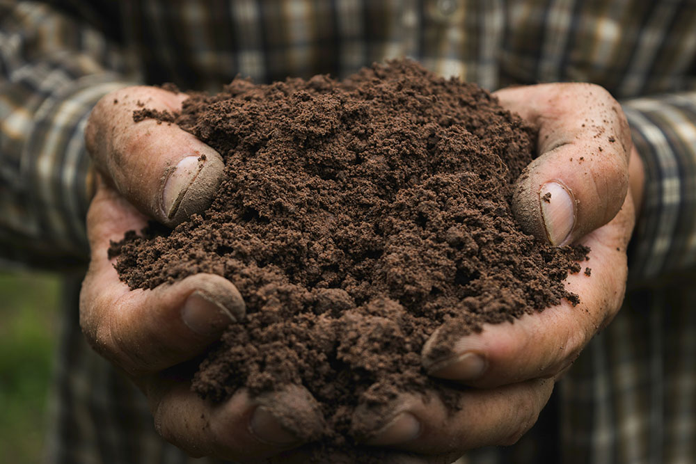 Indigo_Carbon_Soil_Hero_web