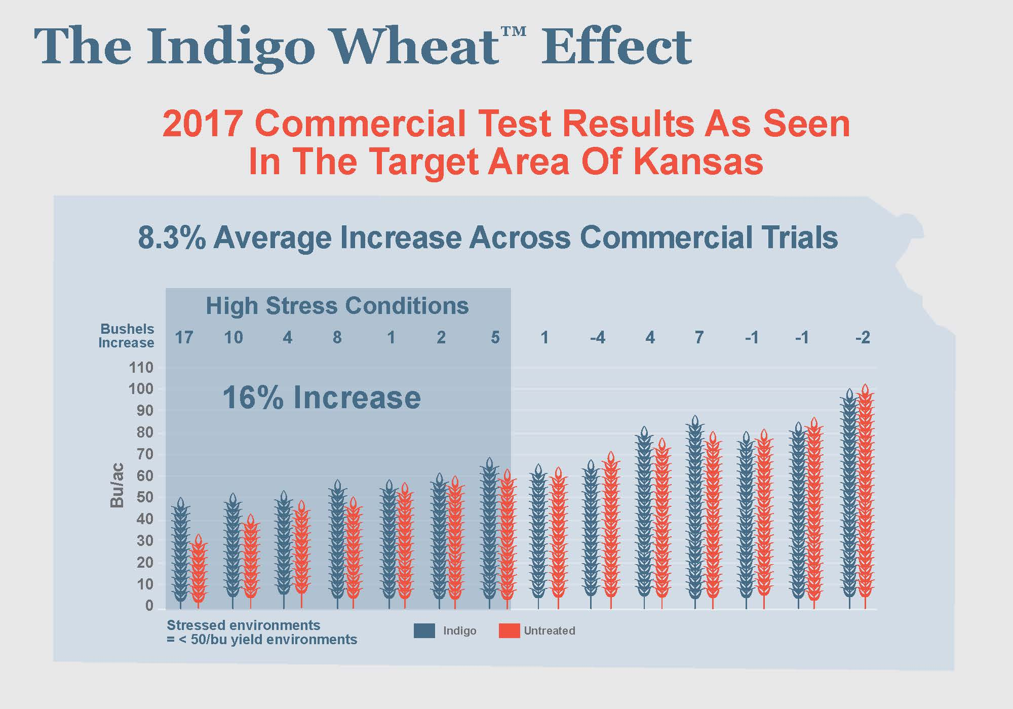 The Indigo Wheat Effect[1].jpg