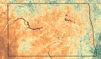 north dakota_crop conditions_aug 2021-min